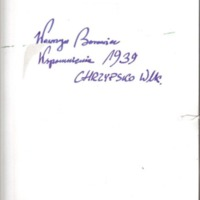 W Borowicz.pdf